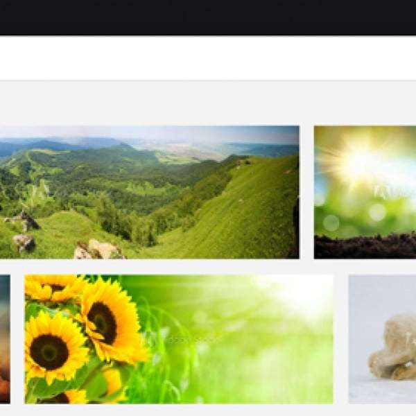 adobe-stock-categories-and-search-results