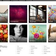 shutterstock-results-and-categories
